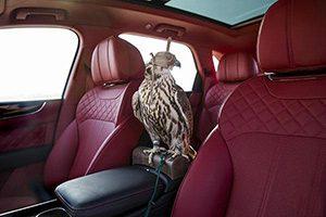 فروش نسخه ویژه بنتلی بنتایگا با پرنده شکاری